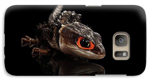 Closeup Red-eyed Crocodile Skink, Tribolonotus Gracilis, Isolated On Black Background Galaxy Case by Sergey Taran