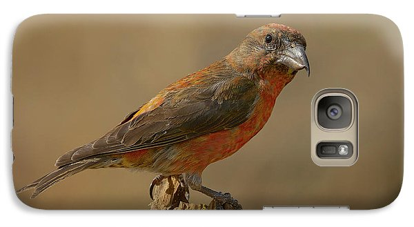 Red Crossbill Galaxy S7 Case by Doug Herr