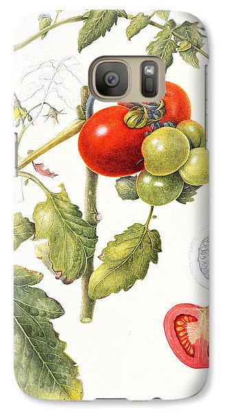 Tomatoes Galaxy Case by Margaret Ann Eden