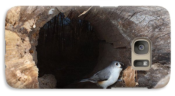 Tufted Titmouse In A Log Galaxy S7 Case by Ted Kinsman
