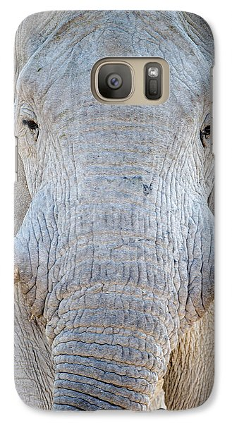 African Elephant Loxodonta Africana Galaxy Case by Panoramic Images