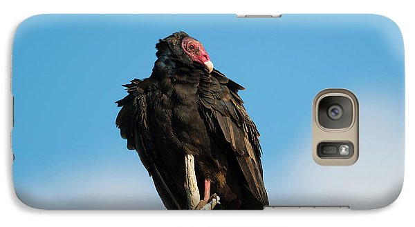 Looking For A Meal Galaxy S7 Case by Mike Dawson