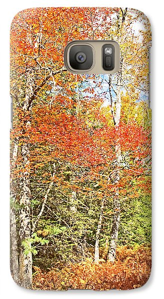 Galaxy Case featuring the digital art Forest Interior Autumn Pocono Mountains Pennsylvania by A Gurmankin