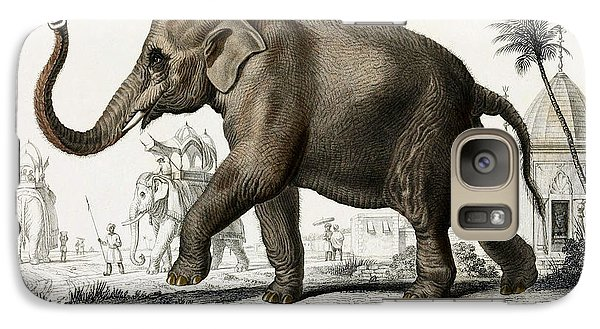 Indian Elephant, Endangered Species Galaxy S7 Case by Biodiversity Heritage Library