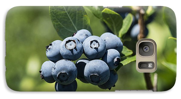 Blueberry Bush Galaxy Case by John Greim