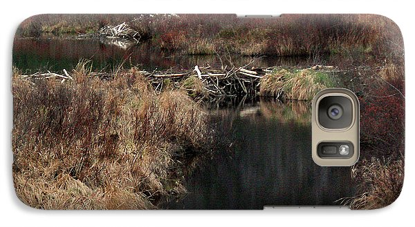 A Beaver's Work Galaxy Case by Skip Willits