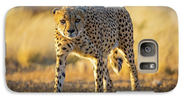 African Cheetah Galaxy S7 Case by Inge Johnsson