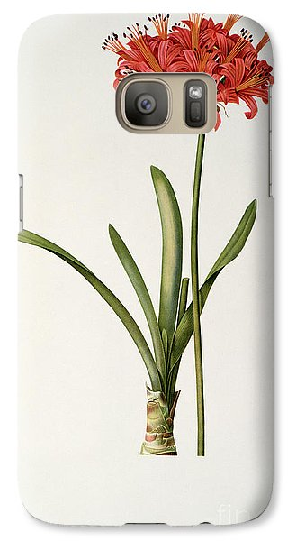 Amaryllis Curvifolia Galaxy Case by Pierre Redoute