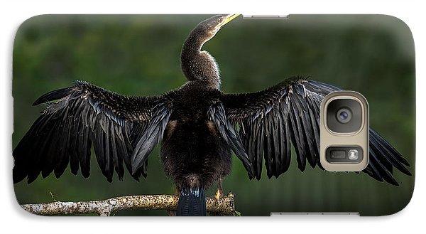 Anhinga Anhinga Anhinga Perching Galaxy S7 Case by Panoramic Images