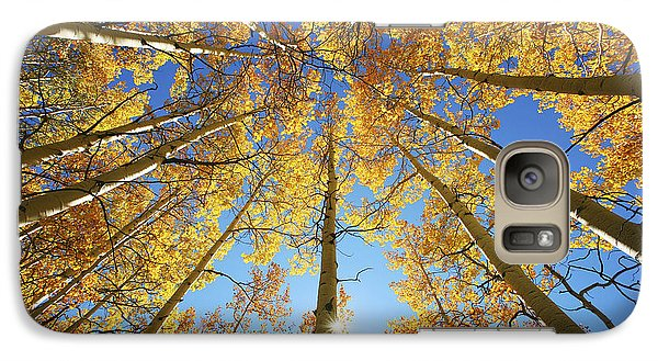 Aspen Tree Canopy 2 Galaxy Case by Ron Dahlquist - Printscapes
