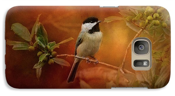 Autumn Day Chickadee Bird Art Galaxy Case by Jai Johnson