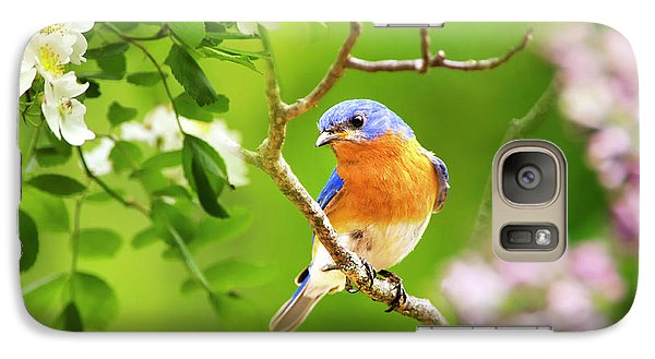 Beautiful Bluebird Galaxy S7 Case by Christina Rollo