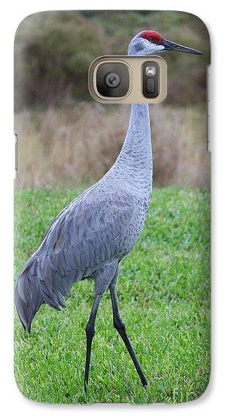 Beautiful Sandhill Crane Galaxy S7 Case by Carol Groenen