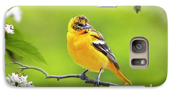Bird And Blooms - Baltimore Oriole Galaxy Case by Christina Rollo