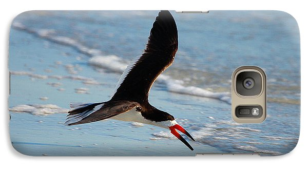 Black Skimmer Galaxy Case by Barbara Bowen