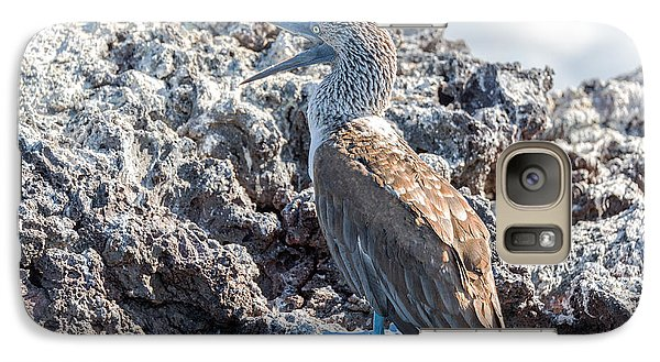 Blue Footed Booby Galaxy S7 Case by Jess Kraft