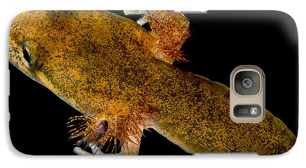California Giant Salamander Larva Galaxy Case by Dant� Fenolio
