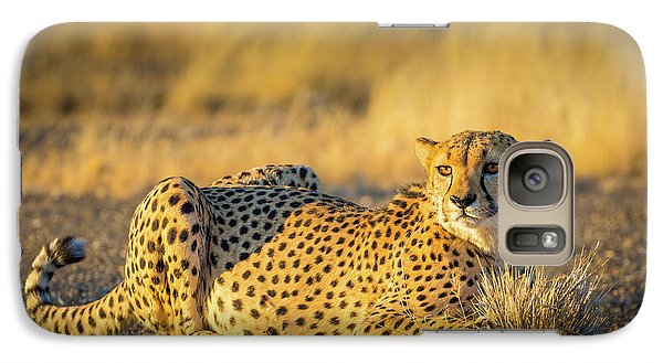 Cheetah Portrait Galaxy S7 Case by Inge Johnsson