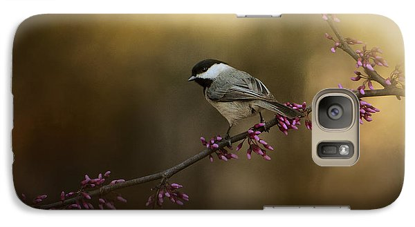 Chickadee In The Golden Light Galaxy Case by Jai Johnson