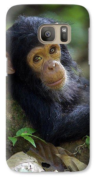 Chimpanzee Pan Troglodytes Baby Leaning Galaxy S7 Case by Ingo Arndt