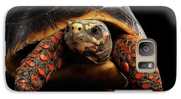 Close-up Of Red-footed Tortoises, Chelonoidis Carbonaria, Isolated Black Background Galaxy Case by Sergey Taran