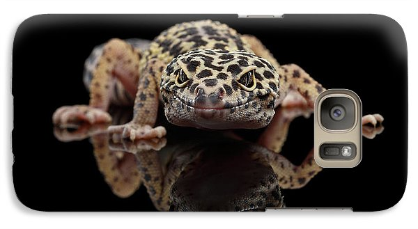 Closeup Leopard Gecko Eublepharis Macularius Isolated On Black Background, Front View Galaxy Case by Sergey Taran