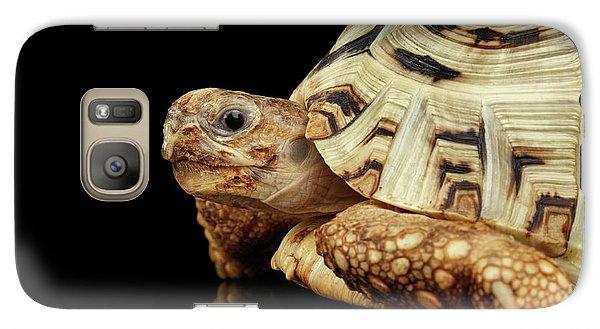Closeup Leopard Tortoise Albino,stigmochelys Pardalis Turtle With White Shell On Isolated Black Back Galaxy Case by Sergey Taran