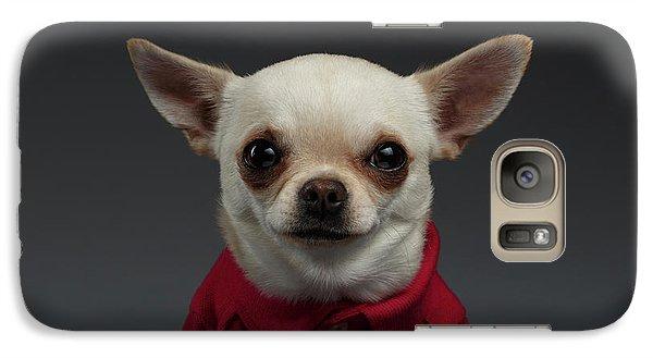 Closeup Portrait Chihuahua Dog In Stylish Clothes. Gray Background Galaxy S7 Case by Sergey Taran