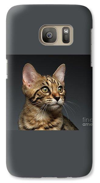 Closeup Portrait Of Bengal Male Kitty On Dark Background Galaxy Case by Sergey Taran