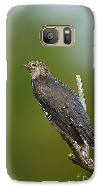 Common Cuckoo Galaxy Case by Steen Drozd Lund