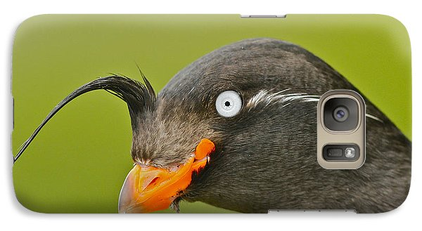 Crested Auklet Galaxy S7 Case by Desmond Dugan/FLPA