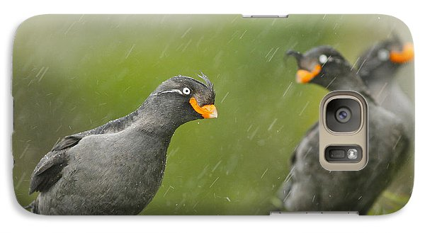 Crested Auklets Galaxy S7 Case by Desmond Dugan/FLPA
