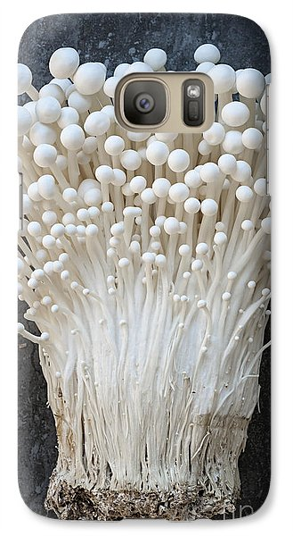 Enoki Mushrooms Galaxy Case by Elena Elisseeva