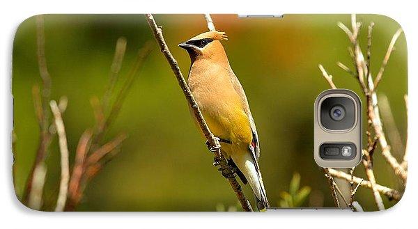 Fishercap Cedar Waxwing Galaxy S7 Case by Adam Jewell