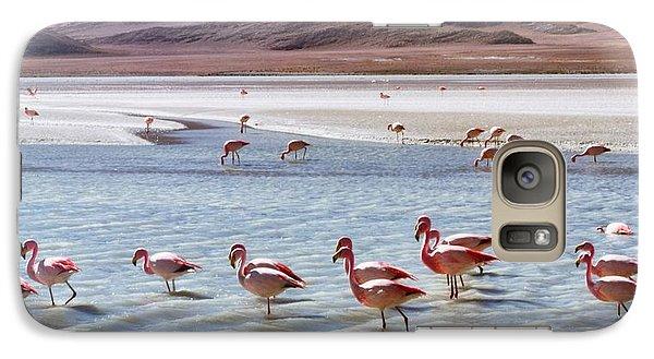 Flamingos Galaxy S7 Case by Sandy Taylor