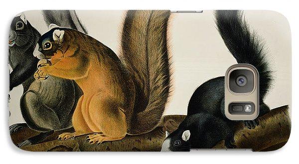 Fox Squirrel Galaxy S7 Case by John James Audubon
