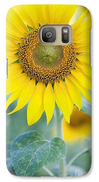 Golden Sunflower Galaxy S7 Case by Tim Gainey