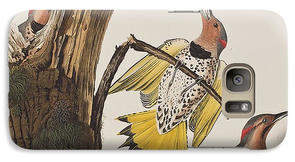 Golden-winged Woodpecker Galaxy S7 Case by John James Audubon