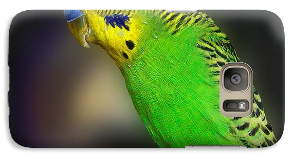 Green Parakeet Portrait Galaxy Case by Jai Johnson