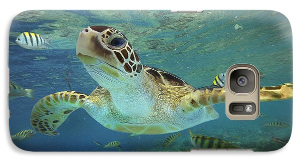 Green Sea Turtle Chelonia Mydas Galaxy S7 Case by Tim Fitzharris