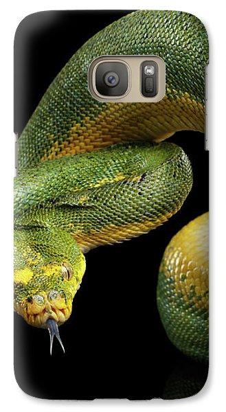 Green Tree Python. Morelia Viridis. Isolated Black Background Galaxy Case by Sergey Taran