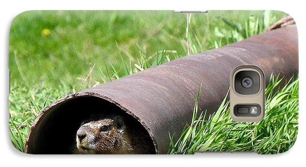 Groundhog In A Pipe Galaxy Case by Will Borden