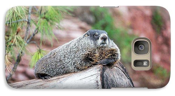 Groundhog On A Log Galaxy S7 Case by Jess Kraft