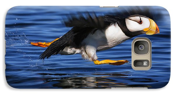 Horned Puffin  Fratercula Corniculata Galaxy S7 Case by Marion Owen