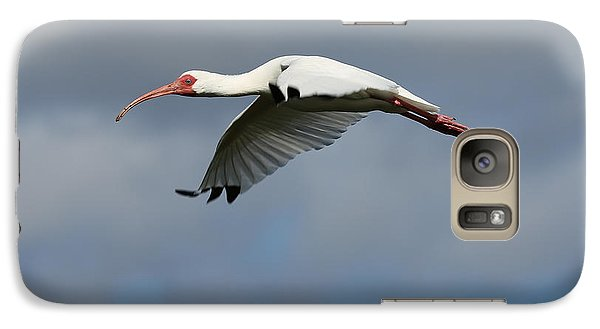 Ibis In Flight Galaxy S7 Case by Carol Groenen