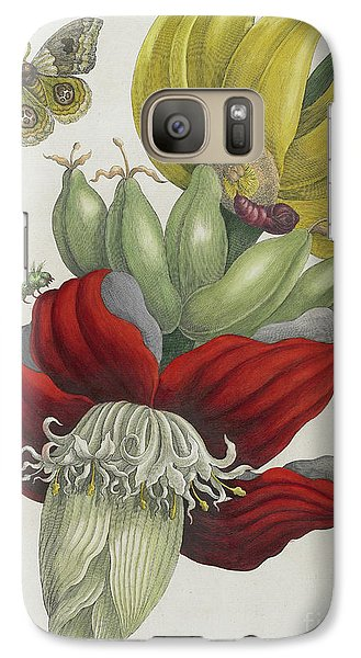 Inflorescence Of Banana, 1705 Galaxy S7 Case by Maria Sibylla Graff Merian