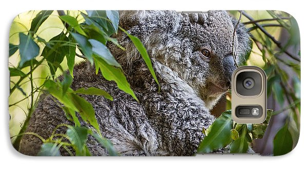 Koala Joey Galaxy S7 Case by Jamie Pham
