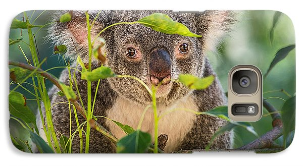 Koala Leaves Galaxy S7 Case by Jamie Pham