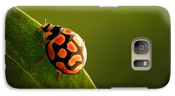 Ladybug  On Green Leaf Galaxy S7 Case by Johan Swanepoel