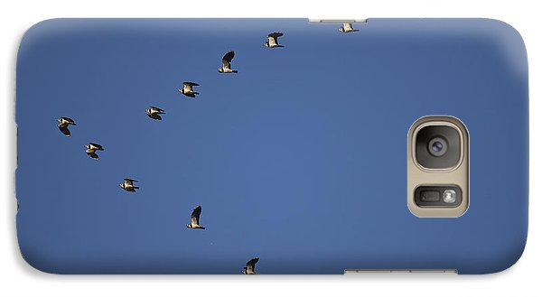 Lapwing Flock Galaxy Case by Per-Olov Eriksson